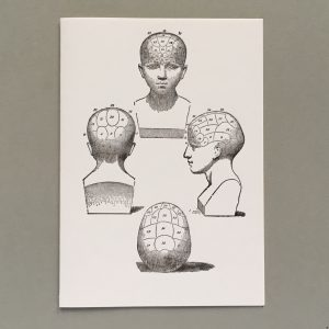 Phrenology head from