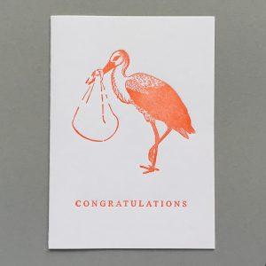 White Stork. Congratulations